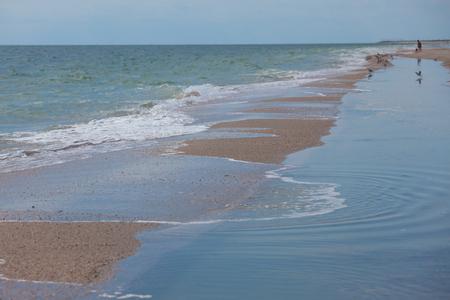 azov sea: Sandy coast line in summer, Azov sea, Ukraine Stock Photo