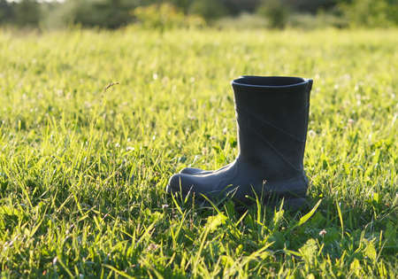 meadow  grass: Botas de goma que se coloca en un prado de hierba verde Foto de archivo