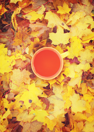 picknic: Cup of tea on yellow leaves background