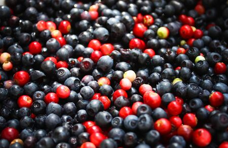 Fresh ripe forest ranberries and blueberries background
