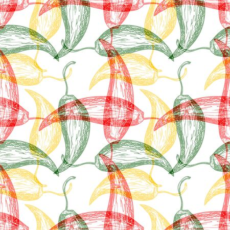 hot pepper: Seamless pattern with hot chilli pepper design Illustration