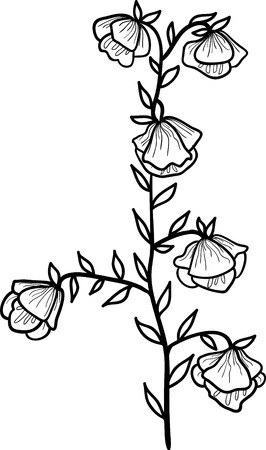 Vector flower illustration isolated on white background