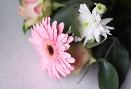 herbera: Bouquet of fresh flowers with a pink gerbera and rose Stock Photo