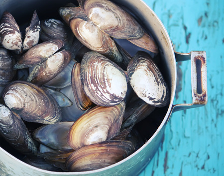 Mussels in an old pan on a wooden table outdoors
