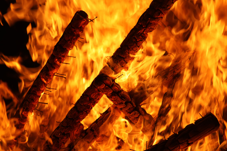 flammable: Bright bonfire flame outdoors. Firewood and wooden sticks burning in fire.