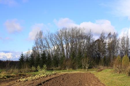 Autumn landscape in Latvia