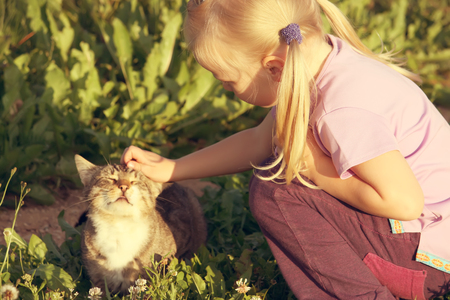 Adorable little caucasian girl stroking her cat outdoors in sunlight at summer.