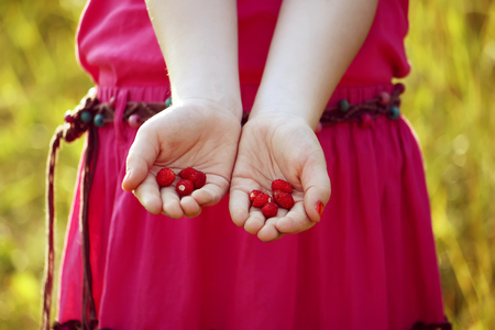 Girls hands with wild forest strawberry at summer