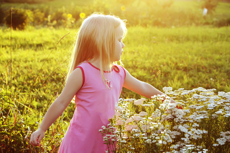 Adorable little blonde ggirl in a meadow in sunny summer day.