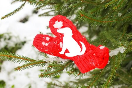 Red mittens with paper dog figure on fir tree green branches. Stock Photo