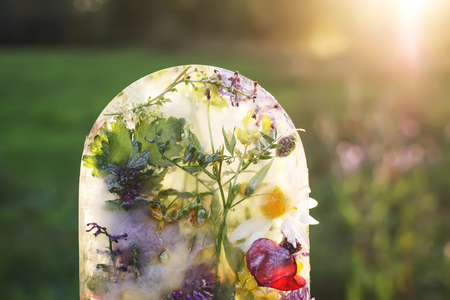 Ice cube with flowers on green grass at summer.