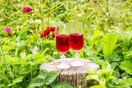 Two glasses with homemade red vine on tree stump in summer park.