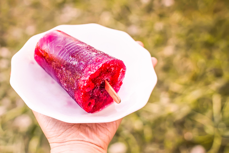 Red fruit sweet popsicle. Ice cream on wooden stick on summer nature background in sunny day.