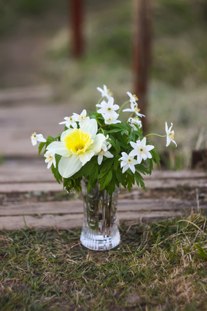 Beautiful bouquet of spring flowers in a vase on nature background. Stock Photo