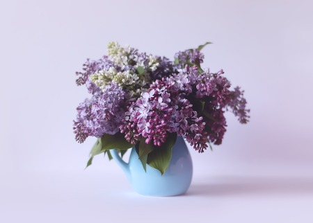 Beautiful bouquet of fragrant purple flowers in blue ceramics vase on light background. Syringa vulgaris or lilacs plant. Standard-Bild