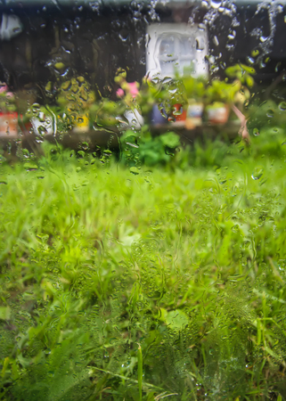 Country yard with old buildings behind the wet glass with autumn rain drops. Stock Photo