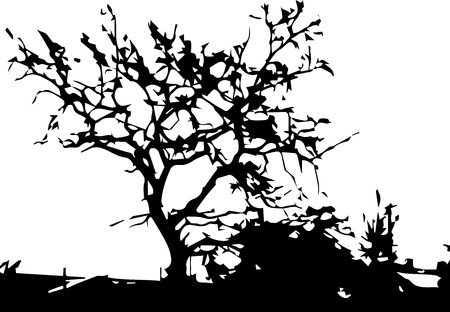 Bare autumn tree black silhouette isolated on white Archivio Fotografico - 114019018