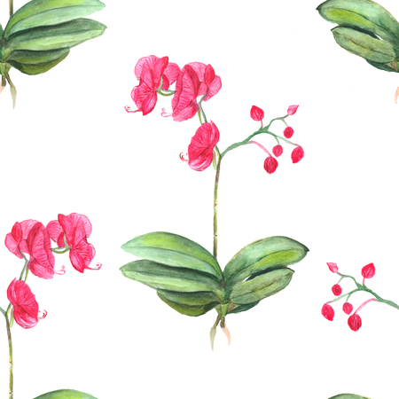 Seamless floral pattern. Botanical background. Watercolor illustration of orchid pink flowers. Stock Photo