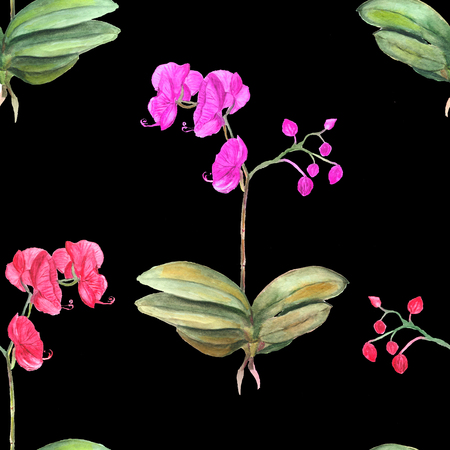 Seamless floral pattern. Botanical background. Watercolor illustration of orchid pink flowers on black.