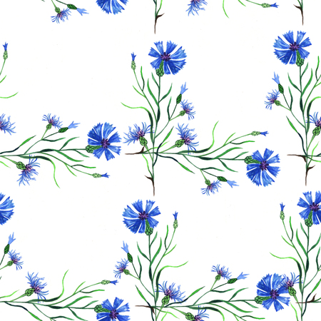 Seamless pattern. Decorative floral background. Watercolor illustration of blue cornflowers. Hand painted botanical elements. Stockfoto - 121163331