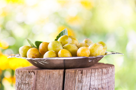 Fresh yellow plums. Ripe fruits in a plate on tree stump in a summer garden.