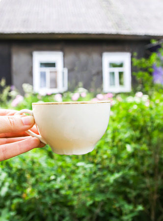 Glass cup of green tea with jasmine fragrant flowers in a hand on old rural house Banco de Imagens - 122773186
