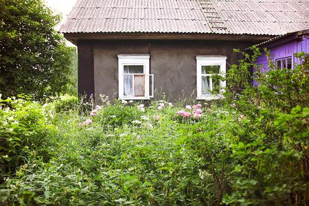 Beautiful spring peony flowers on rural wooden window