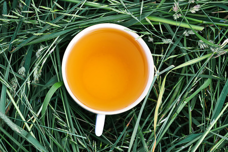 Herbal tea of medical plants in a cup outdoors on mawn green grass