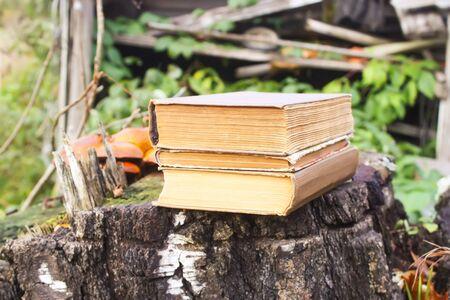 Stack of old books on tree stump in autumn park Foto de archivo