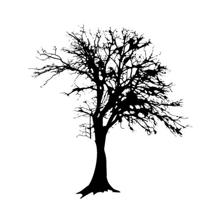 Black tree silhouette isolated on white background. Forest nature element. Vector illustration. Vettoriali