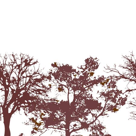 Colorful sseamless background with cniferous and deciduous tree silhouettes. Forest nature elements endless pattern. Vector illustration