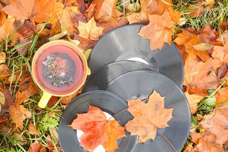 Vntage vinyl records and ceramic cup of tea on fall leaves. Banco de Imagens