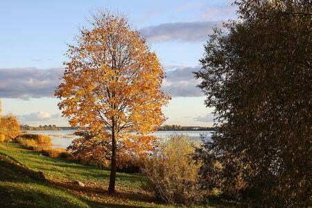 Beeautiful park in Riga at autumn, Latvia, East Europe.
