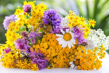 Bouquet of tansy, white daisy and thorny burdock wild summer flowers.