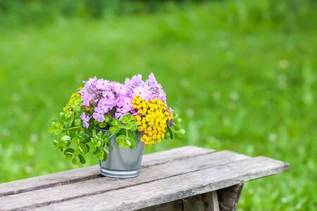 Beautiful bouquet of wildflowers on wooden bench on summer nature background in countryside.
