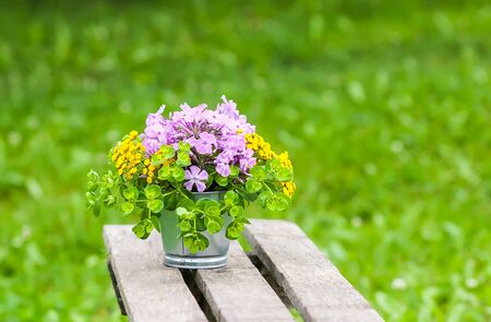 Beautiful bouquet of wildflowers on wooden bench on summer nature background in countryside. Stock Photo