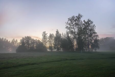 Evening mist on a field in countryside at summer Stock fotó