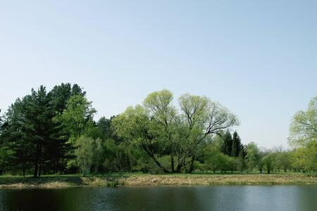 Beautiful spring landscape with green trees and pond with calm transparent water in sunny day.