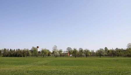 Beautiful spring landscape with green trees and green field. Zdjęcie Seryjne