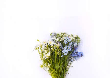 Beautiful bouquet of wildflowers on white background. Foto de archivo