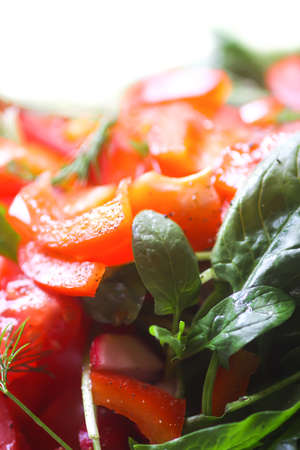 Fresh salad of the red tomatoes and spinach with olive oil, salt and pepper 免版税图像