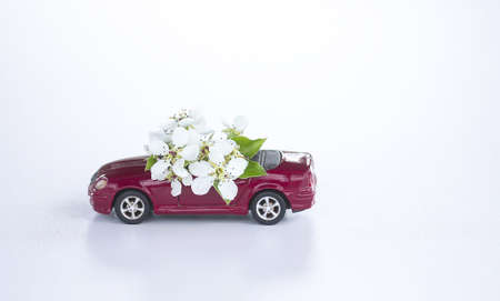 Vintage toy car with cherry tree white flowers on white background. 免版税图像