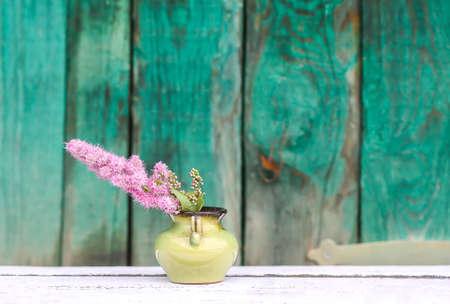 Astilbe plant pink flowers in ceramic vase outdoors.