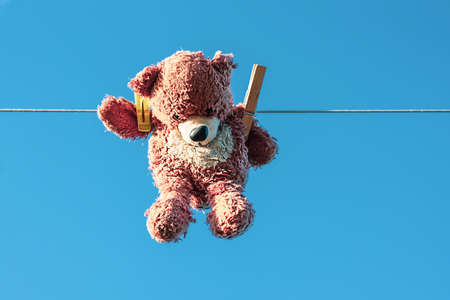 Funny brown teddy bear hanging on a clothesline with wooden clothespin