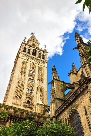 La Giralda  Bell Tower of Seville Cathedral,Spain   photo