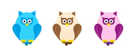 Collection of cute, colorful owls  Vector