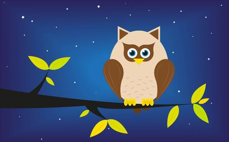 Owl in a tree at night  Vector