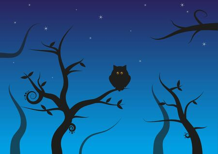 Dark forest background with silhouette of owl  Vector
