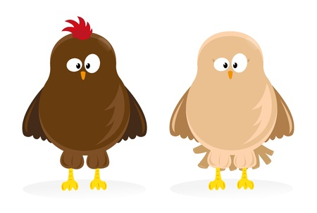 Cartoon hen and chicken standing Vector