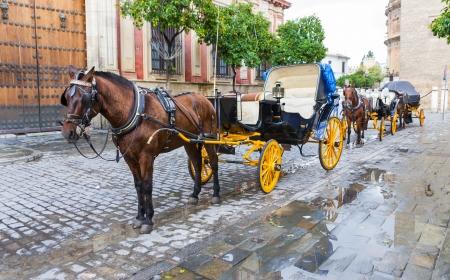 Dos carros de caballos frente a Sevilla